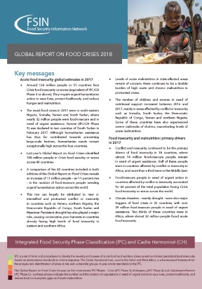 FSIN - Global Report on Food Crisis 2018